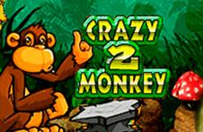 Демо автомат Crazy Monkey 2